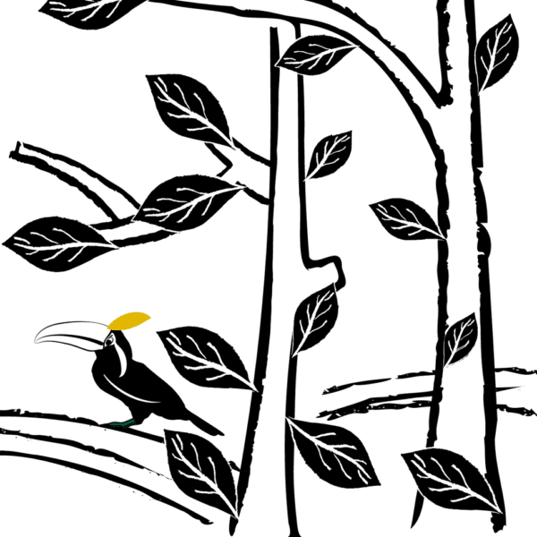 Toucans living in the forest