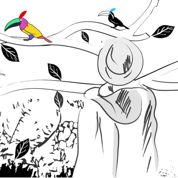 Le poète français rencontre les toucans